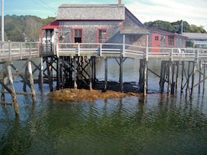 Boothbay stilts wpr
