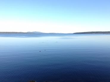 Across Blue Hill Bay