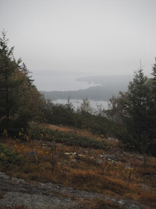 BH fog view wpr