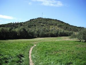 Hayes Trail