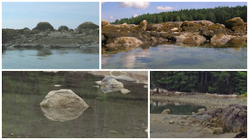 Rocks wpr
