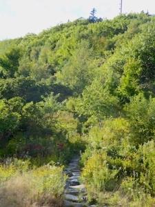 trail-head-at-blue-hill