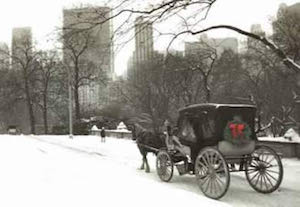 carriageinsnow