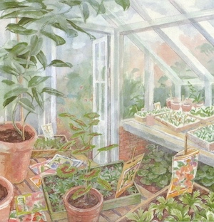 emilie-loring-greenhouse