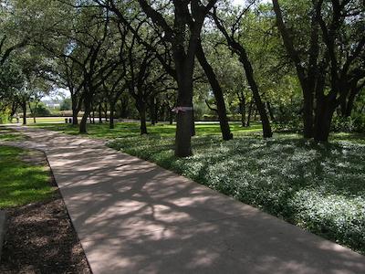 San Antonio campus