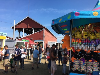 Blue Hill Fair scene
