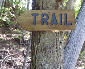 Trail marker Blue Hill