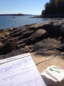 Writing on the rocks