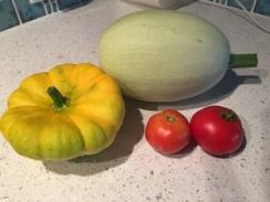 last squash and tomatoes