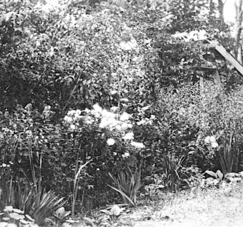 A 1924 Feb