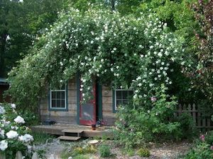 Silver Moon Cottage