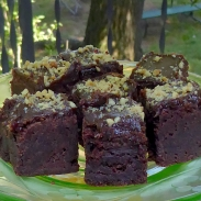 Emilie Loring brownies